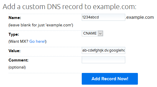 01 Custom DNS TXT record.png