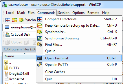 WinSCP — How to run shell commands – DreamHost