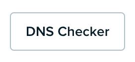 panel-websites-dns-checker