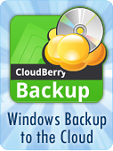 Banner_cloudberry11.png